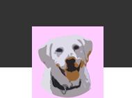 Tierheilpraxis Toby